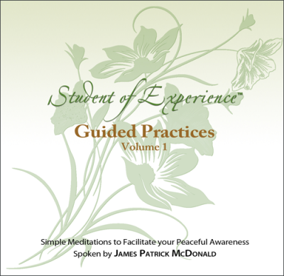 Audio Recording: Guided Practices by James Patrick McDonald